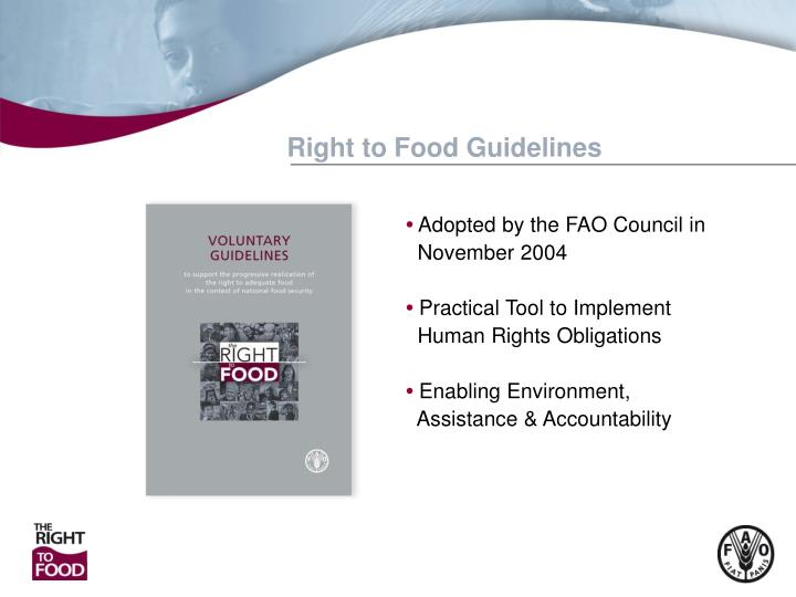Right to Food Guidelines