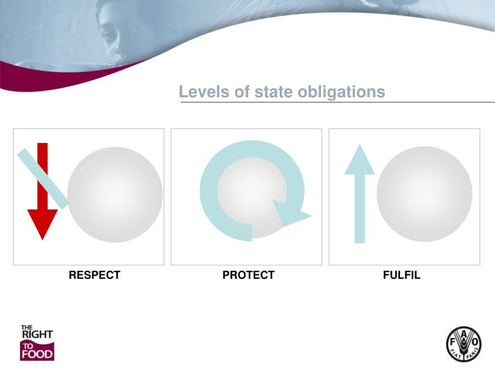 Levels of state obligations