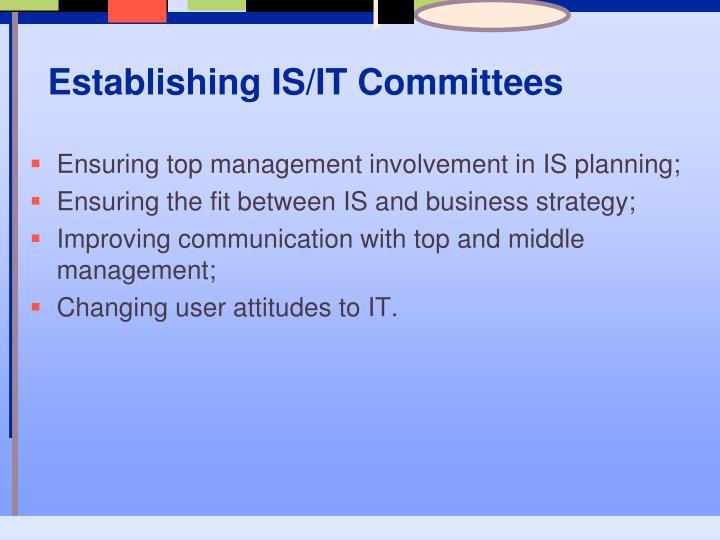 Establishing IS/IT Committees