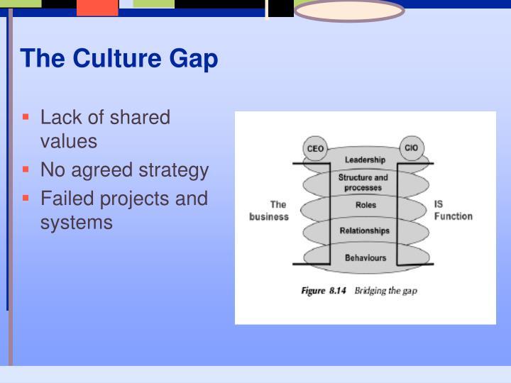 The Culture Gap