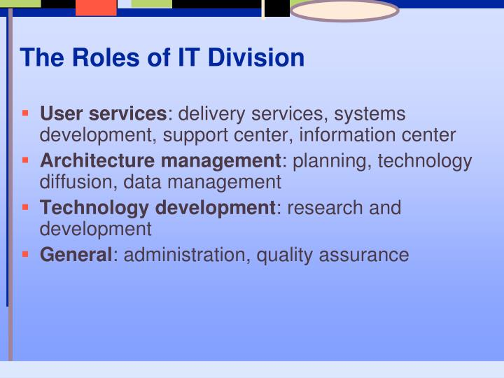The Roles of IT Division