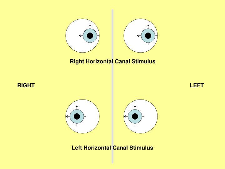 Right Horizontal Canal Stimulus