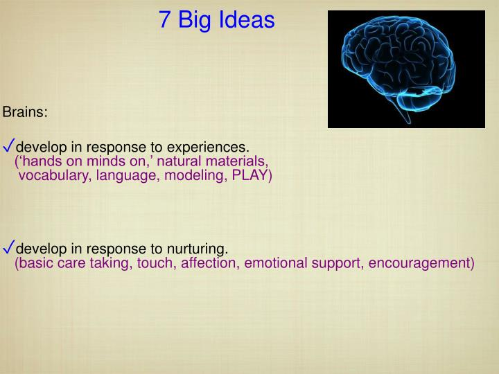 7 Big Ideas