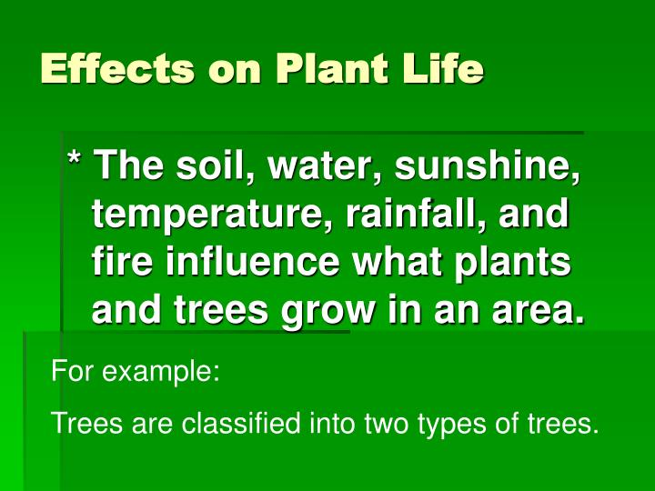 Effects on Plant Life