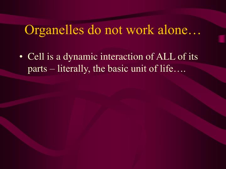 Organelles do not work alone…