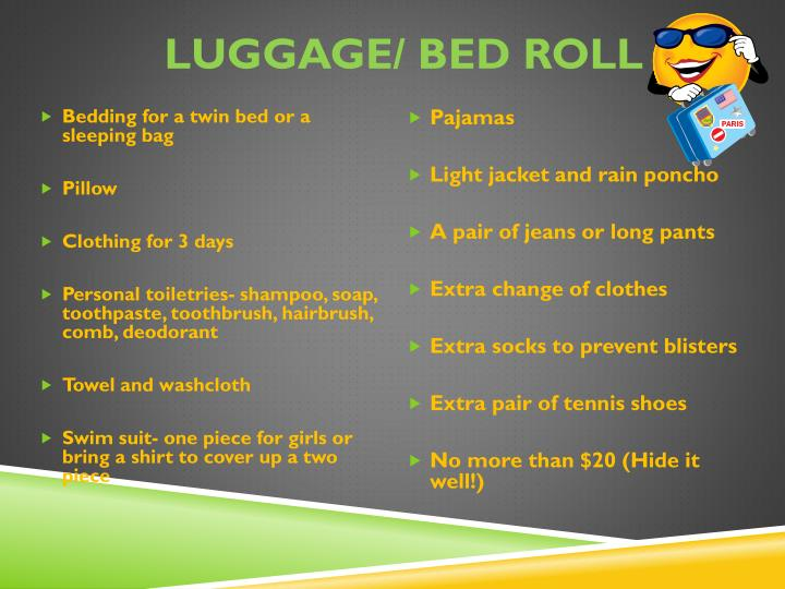 Luggage/ Bed Roll