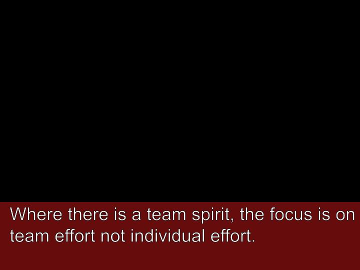 Where there is a team spirit, the focus is on team effort not individual effort.
