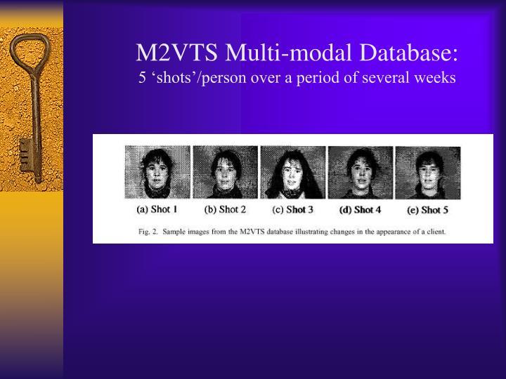 M2VTS Multi-modal Database: