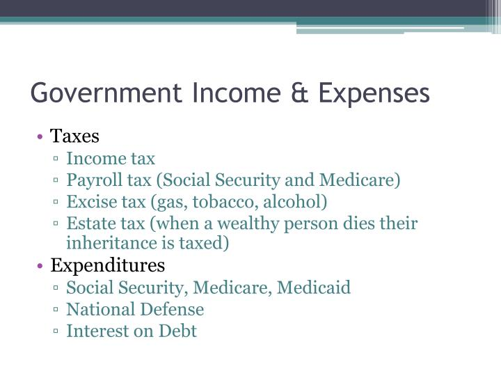 Government Income & Expenses