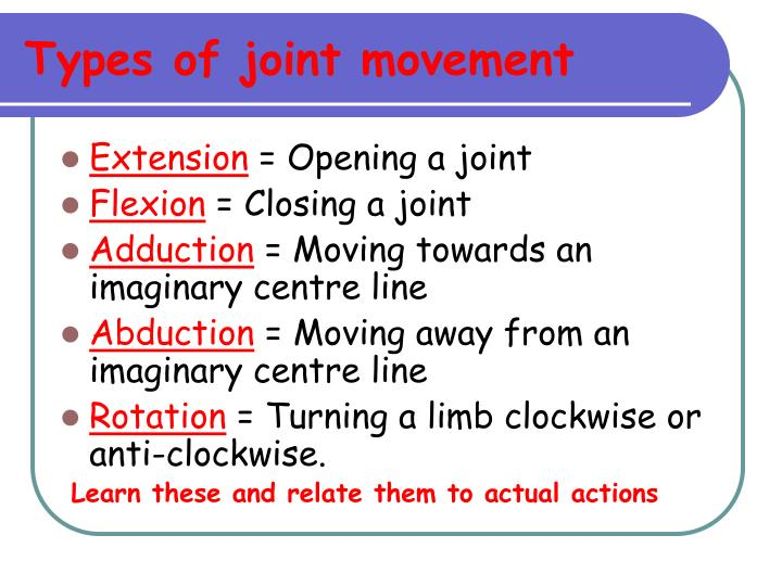 Types of joint movement