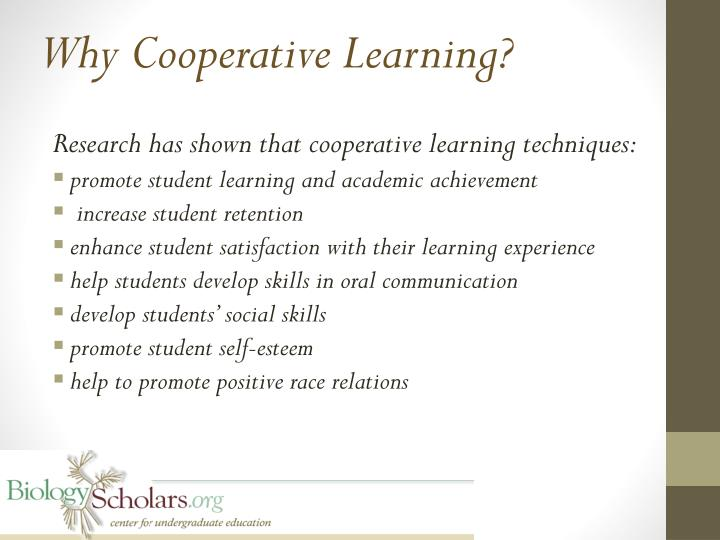 Why Cooperative Learning?