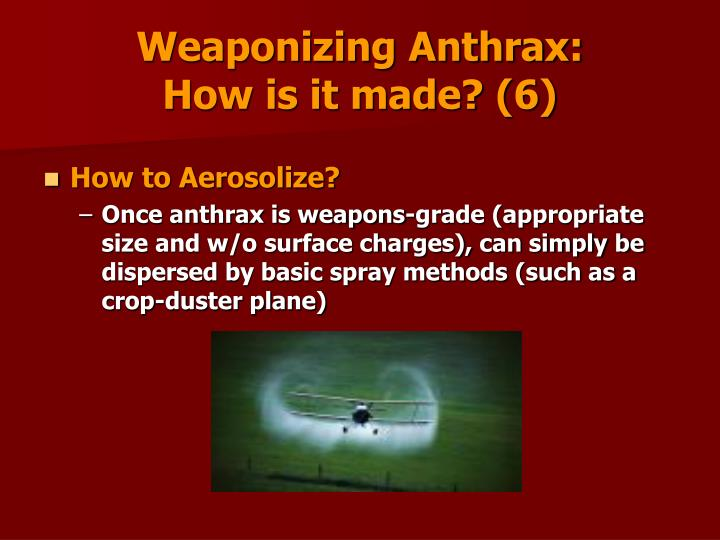 Weaponizing Anthrax:                                      How is it made? (6)