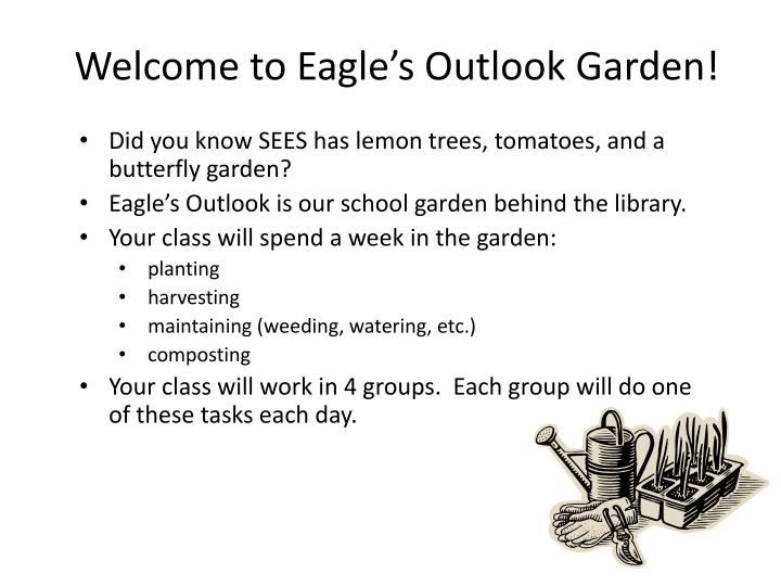 Welcome to eagle s outlook garden