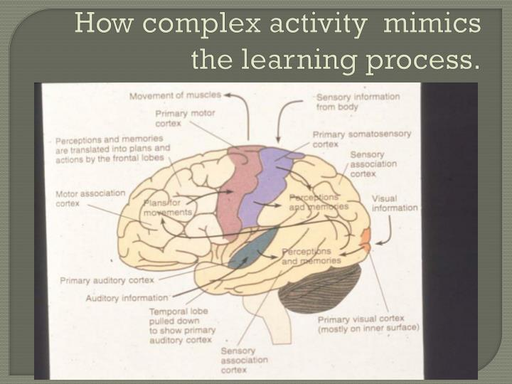 How complex activity  mimics the learning process.