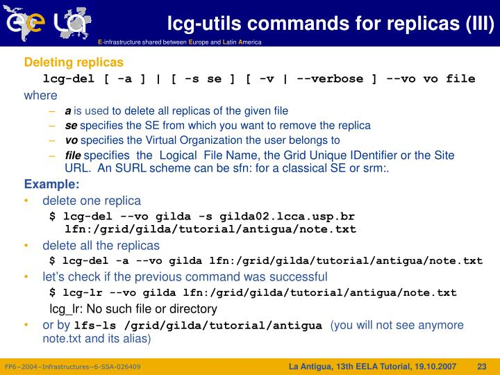 lcg-utils commands for replicas (III)
