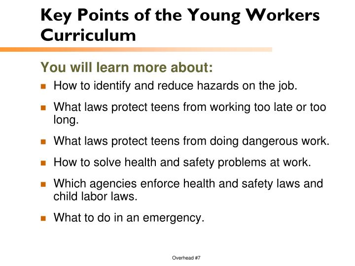 Key Points of the Young Workers Curriculum