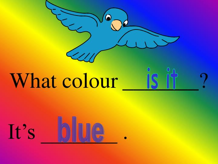 What colour