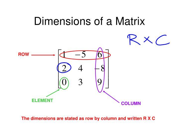 Dimensions of a Matrix