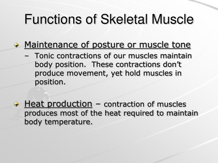 Functions of Skeletal Muscle
