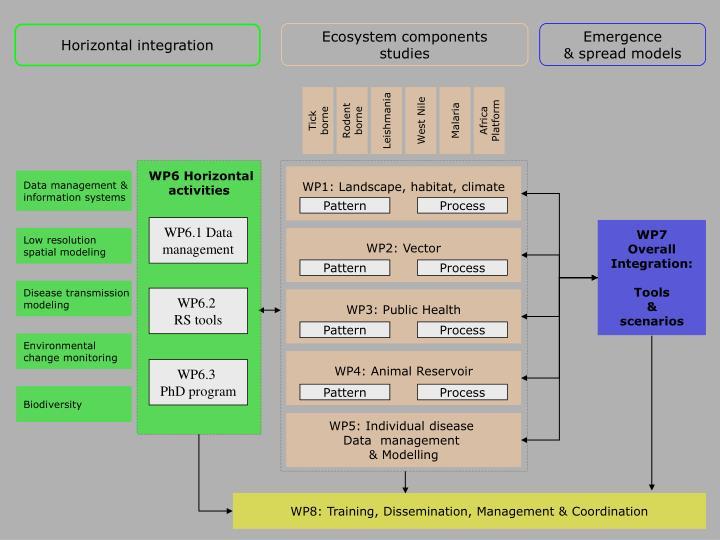 Data management &