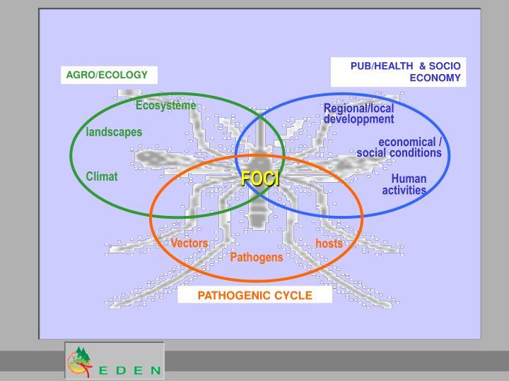 PUB/HEALTH  & SOCIO ECONOMY