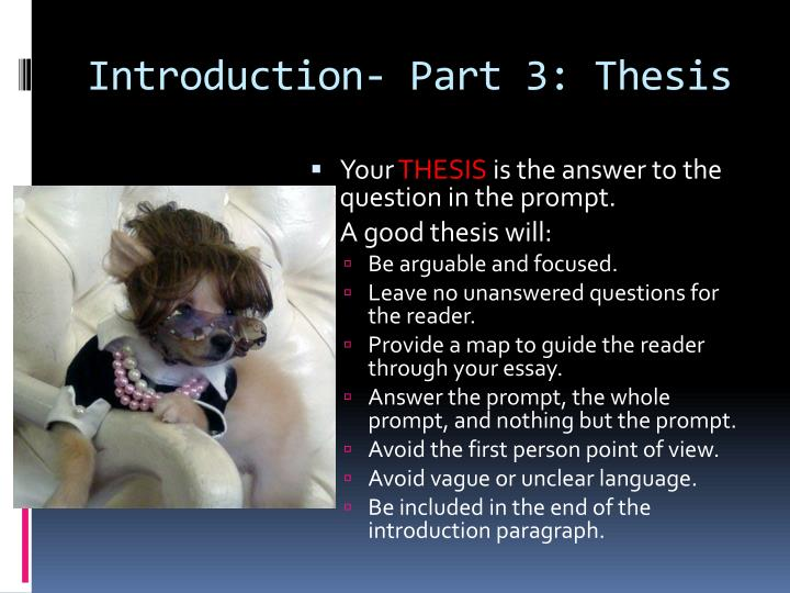 Introduction- Part 3: Thesis