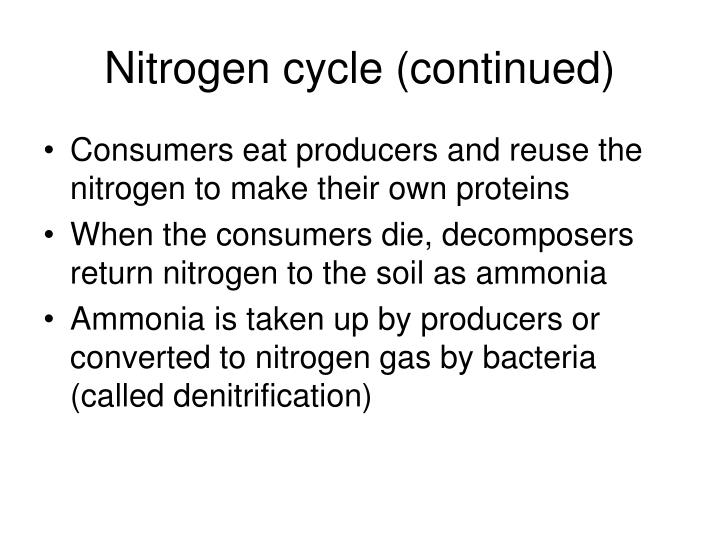 Nitrogen cycle (continued)