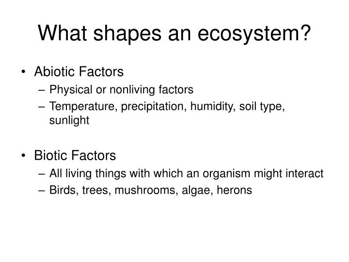 What shapes an ecosystem?