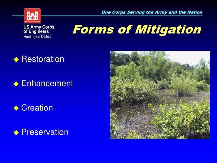 Forms of Mitigation