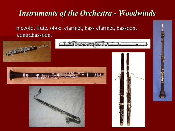Instruments of the Orchestra - Woodwinds