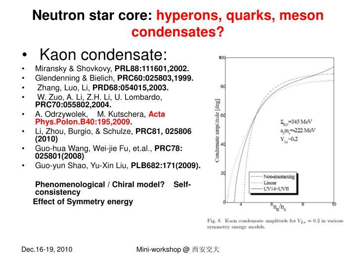 Neutron star core: