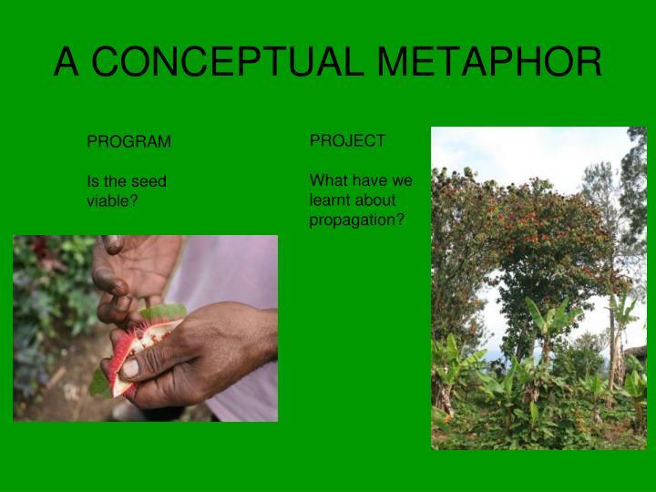 A CONCEPTUAL METAPHOR