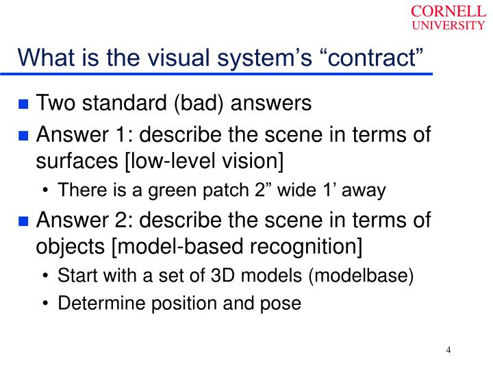 "What is the visual system's ""contract"""