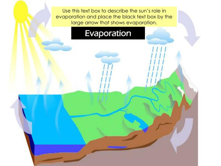 Use this text box to describe the sun's role in evaporation and place the black text box by the la...