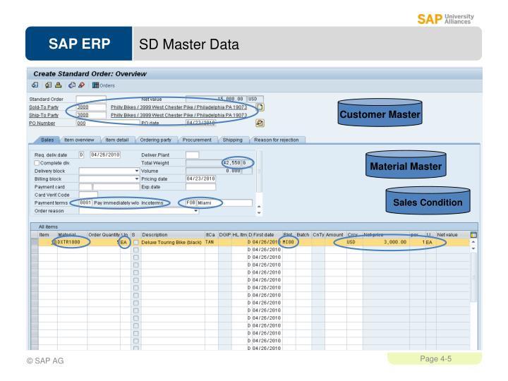 SD Master Data
