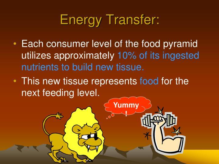 Energy Transfer: