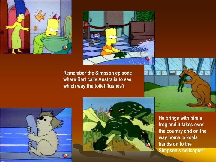 Remember the Simpson episode where Bart calls Australia to see which way the toilet flushes?