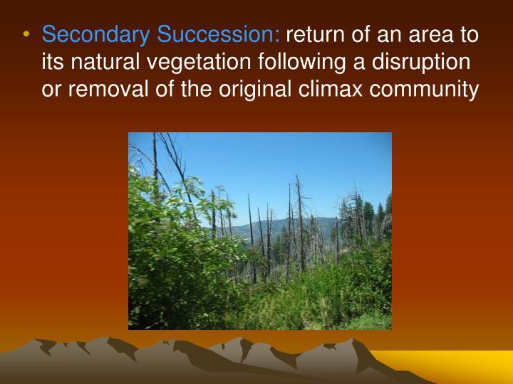 Secondary Succession: