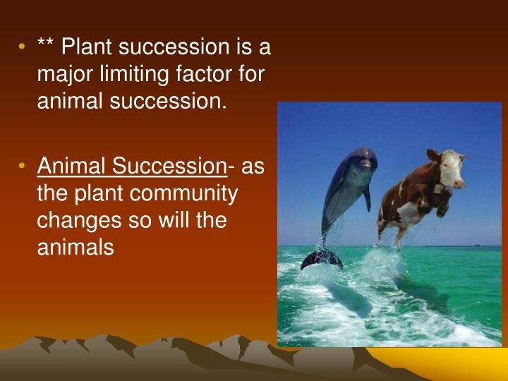 ** Plant succession is a major limiting factor for animal succession.