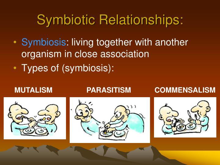 Symbiotic Relationships: