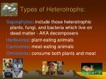 types of heterotrophs