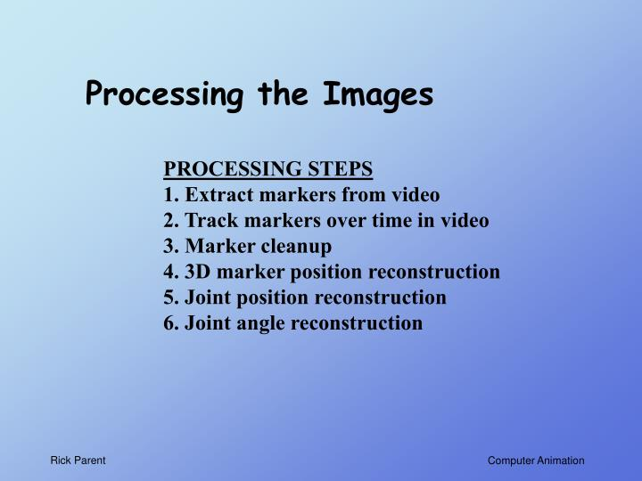 Processing the Images