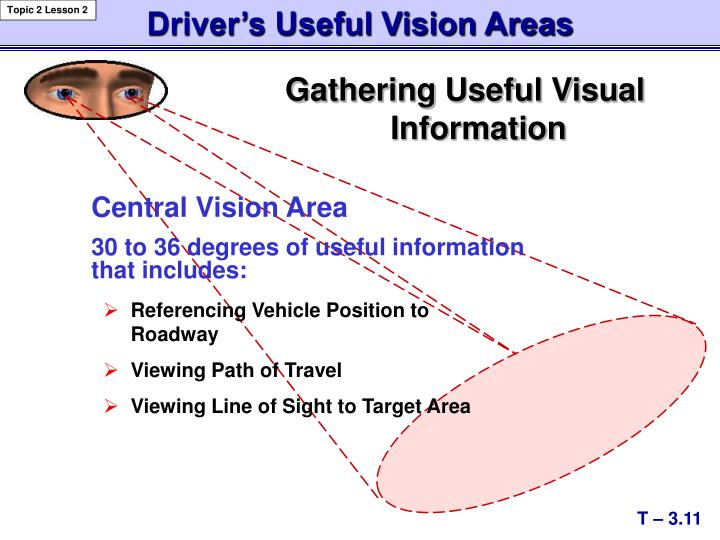 Driver's Useful Vision Areas