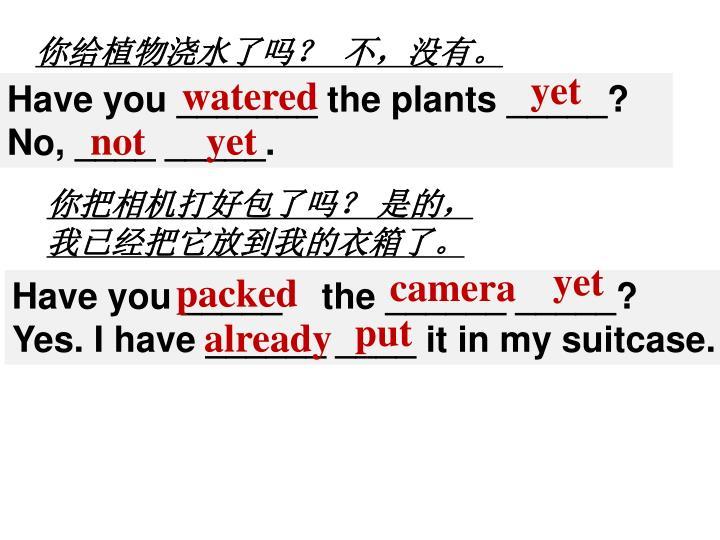 你给植物浇水了吗?  不,没有。