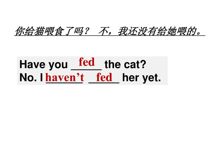 你给猫喂食了吗?  不,我还没有给她喂的。