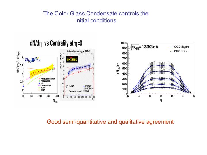 The Color Glass Condensate controls the