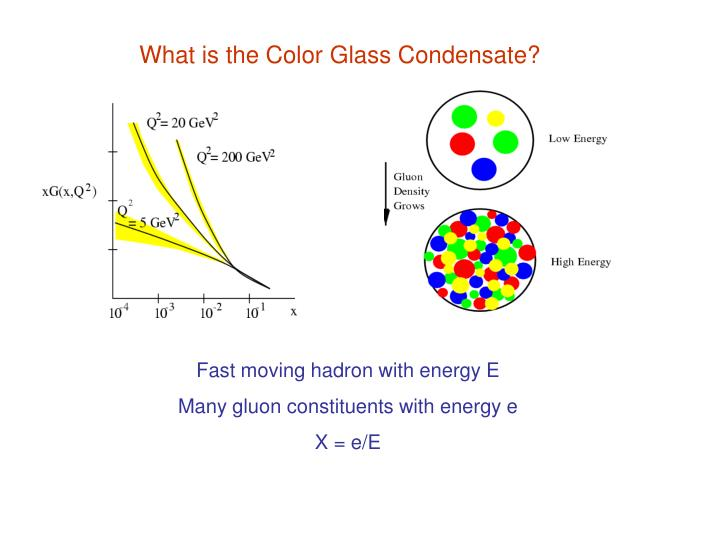 What is the Color Glass Condensate?