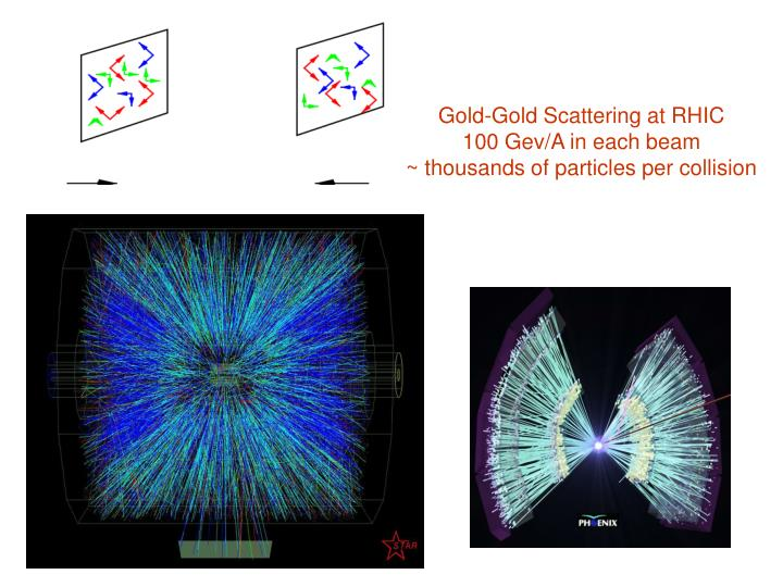 Gold-Gold Scattering at RHIC