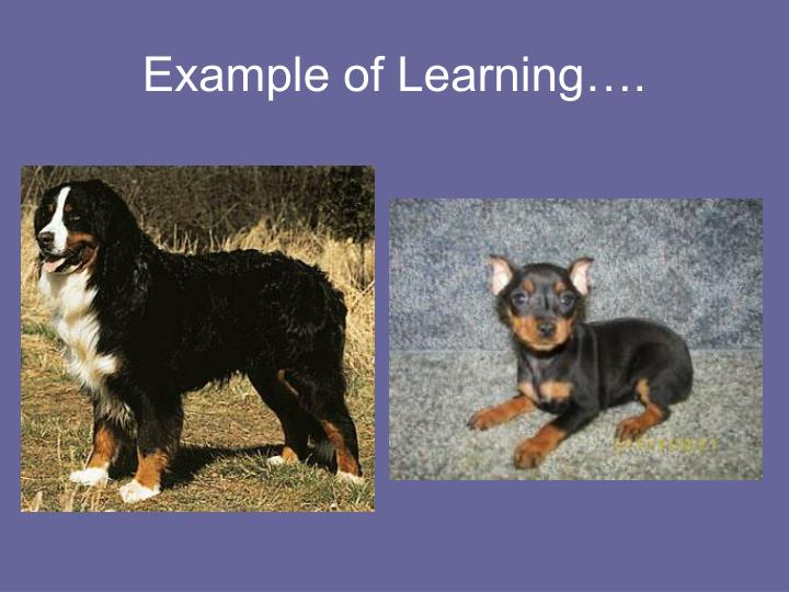 Example of Learning….