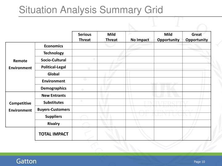 Situation Analysis Summary Grid